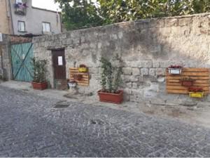 Fiori per dare nuova vita a Piazza Santa Maria la Nova.