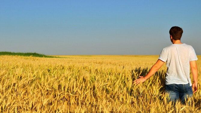 """Ministra Bellanova: """"Via libera a uscite per coltivare orti e terreni in comune diverso da quello di residenza"""""""