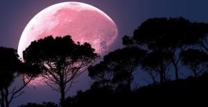 Questa sera la meravigliosa superluna rosa.